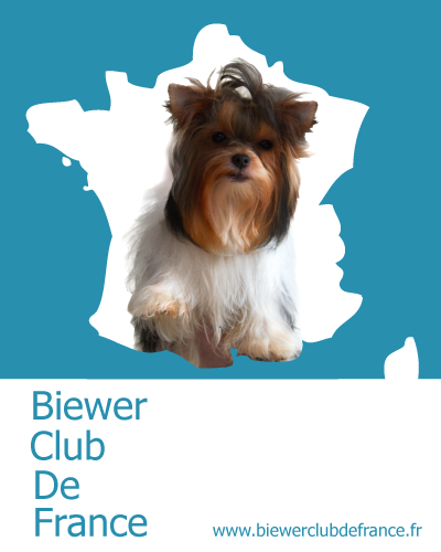 Logo Biewer Club de France
